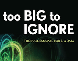 Paperback Version of Too Big to Ignore Is Coming